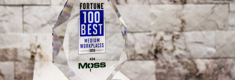 Fortune Best Medium Work Places 2018